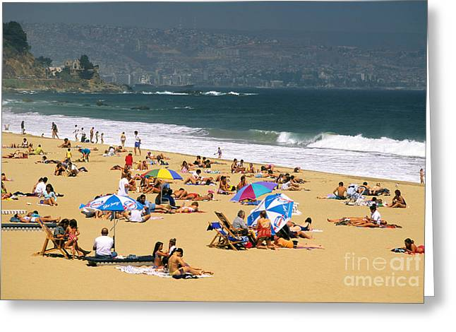 Sunbathers Greeting Card by David Frazier and Photo Researchers