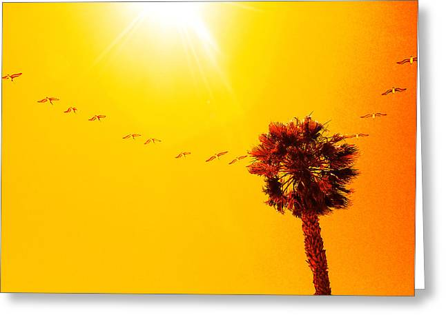 Sunbound Greeting Card by Aurica Voss