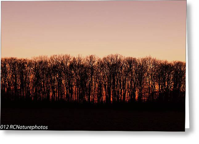 Greeting Card featuring the photograph Sundown In Silhouette by Rachel Cohen