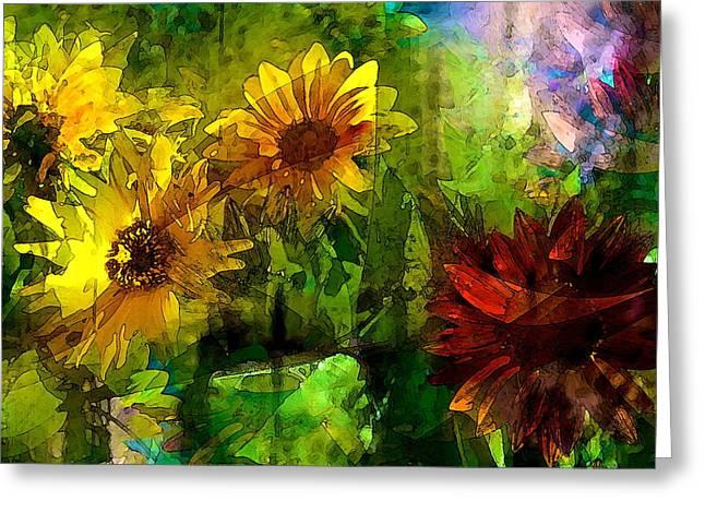 Sunflower 4 Greeting Card by Pamela Cooper