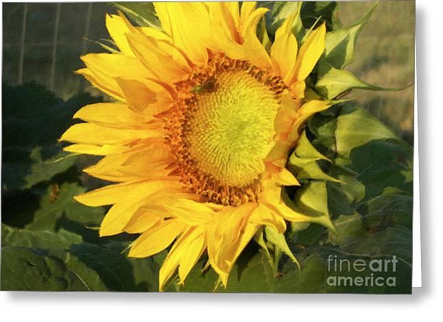 Greeting Card featuring the digital art Sunflower Digital Art by Deniece Platt