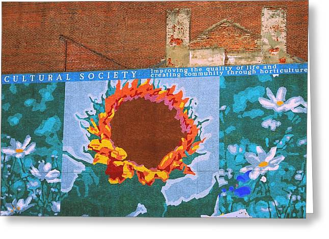 Sunflower In Phili Greeting Card by JAMART Photography