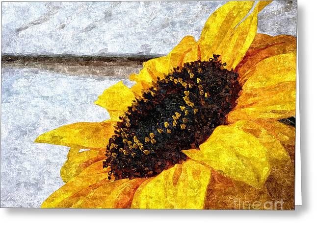 Sunflower Paint Greeting Card by Slavi Begov