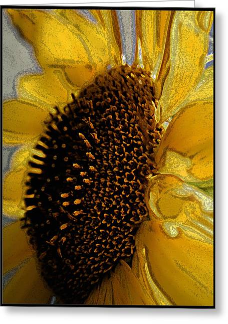 Greeting Card featuring the photograph Sunflower Side by Lou Belcher