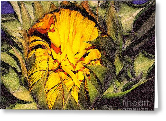 Sunflower Slumber Greeting Card