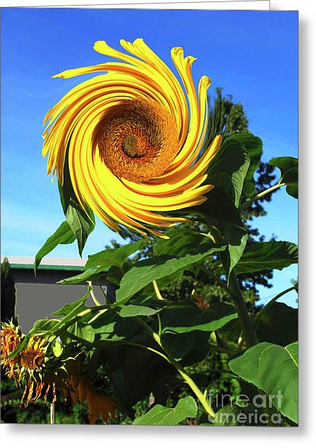 Sunflower Twirl Greeting Card