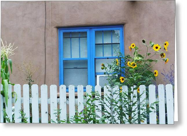 Sunflower Window  Greeting Card by Vicki Lomay