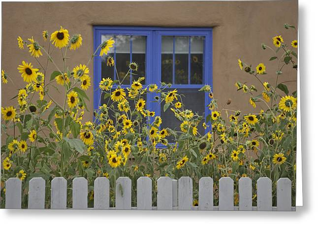 Sunflowers Bloom In A Garden Greeting Card by Ralph Lee Hopkins