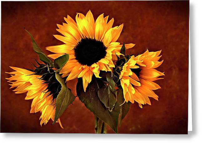 Sunflowers Greeting Card by James Bethanis