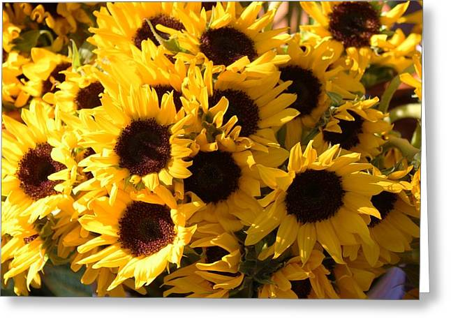 Sunflowers Greeting Card by Paulette Thomas
