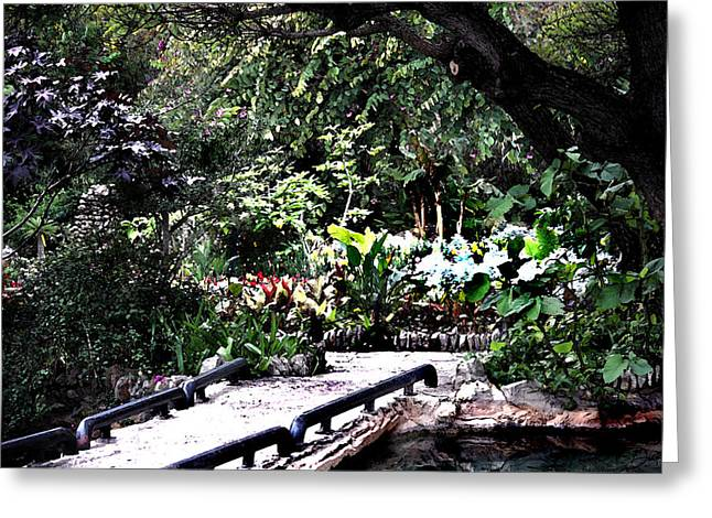 Sunken Gardens Collection II Greeting Card by Diana Gonzalez