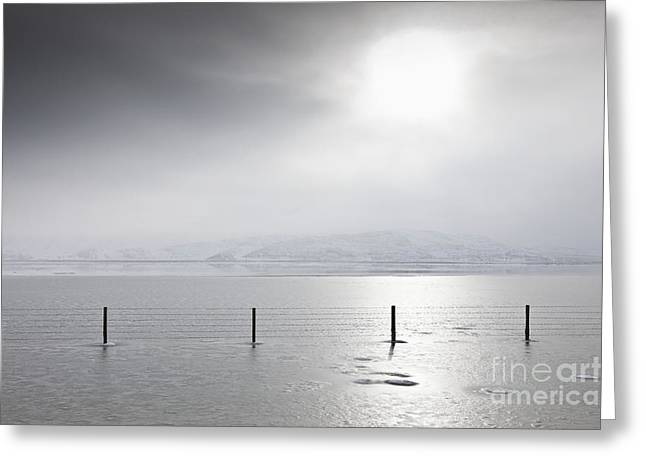 Sunlight Illuminating An Icy Landscape Greeting Card by Dave & Les Jacobs