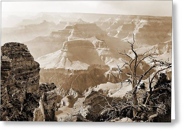 Sunlight In The Grand Canyon Greeting Card by M K  Miller