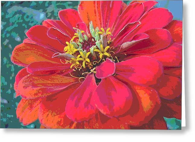 Sunlit Giant Zinnia Greeting Card by Padre Art
