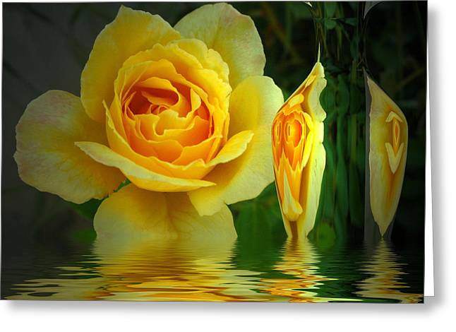 Sunny Delight And Vase 2 Greeting Card by Joyce Dickens