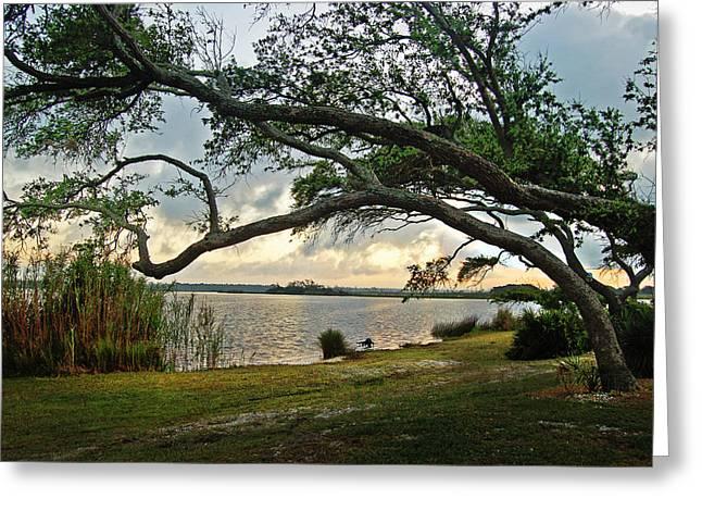 Sunrise Across The Lagoon Greeting Card by Michael Thomas