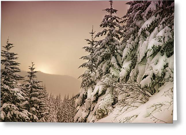 Sunrise At Mt Rainier Greeting Card by Nichon Thorstrom