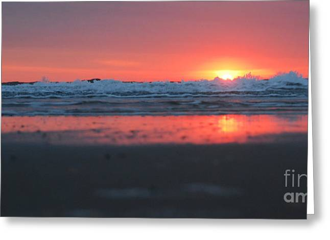 Sunrise From The Sand Greeting Card by Linda Mesibov