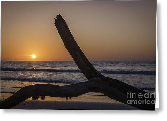 Sunrise Hunting Island Greeting Card
