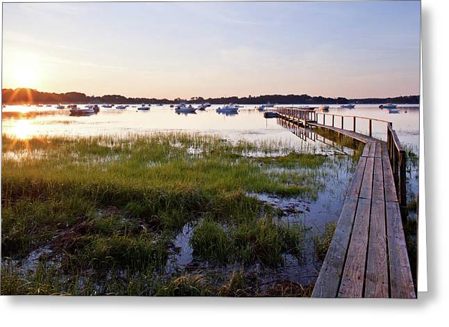 Sunrise In Chatham Greeting Card by Nick  Shirghio