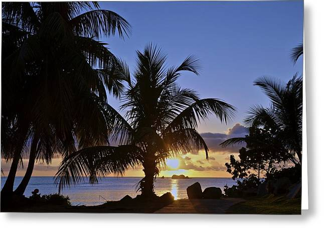 Sunrise In Paradise Greeting Card by Nancy Rohrig