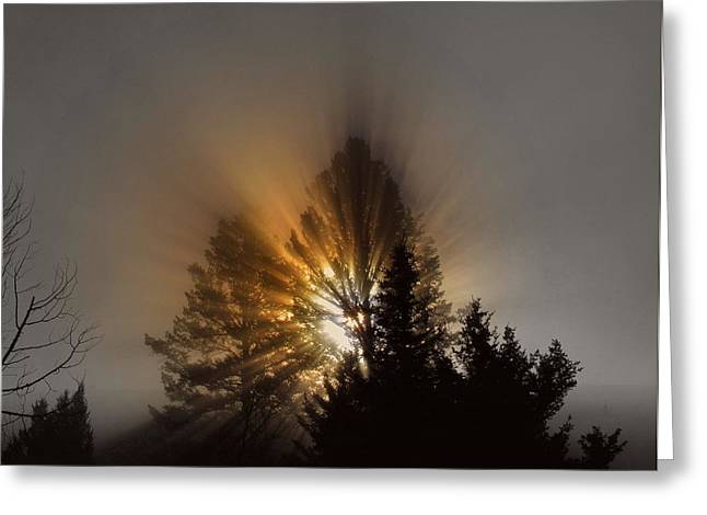 Sunrise Greeting Card by Irina Hays