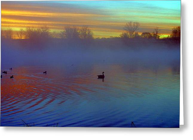 Sunrise On Duck Pond Greeting Card by Laurie Prentice