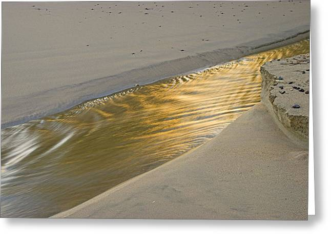 Greeting Card featuring the photograph Sunrise On Stream-2- St Lucia. by Chester Williams
