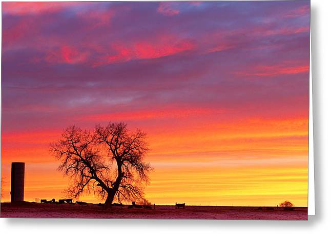 Sunrise On The Range Greeting Card