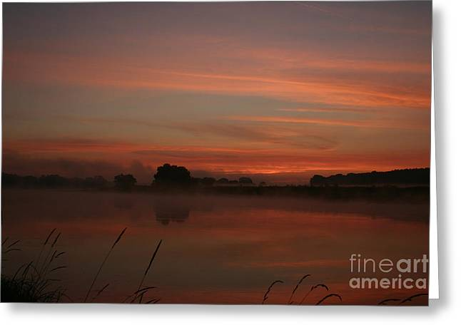 Sunrise On The River Greeting Card by Torsten Dietrich