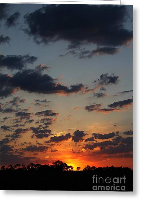 Greeting Card featuring the photograph Sunrise Over Field by Everett Houser