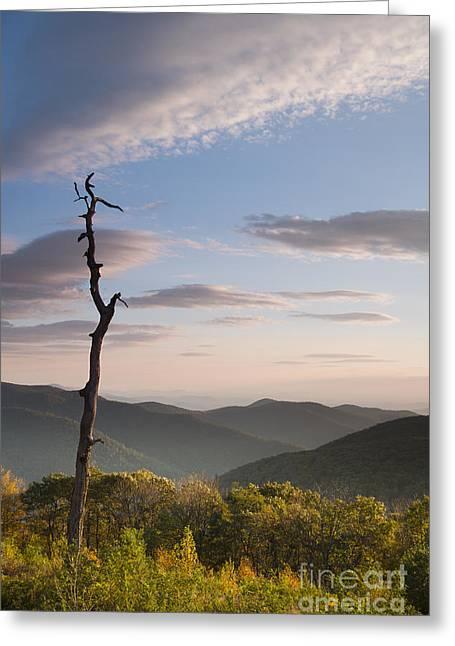 Sunrise Over Shenandoah National Park  Greeting Card by Dustin K Ryan