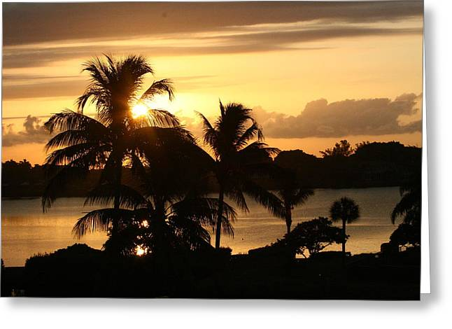Sunrise Over The Intracoastal Greeting Card