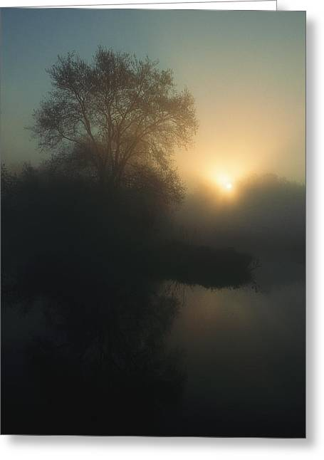 Sunrise Over The Wetland In The Oder Greeting Card