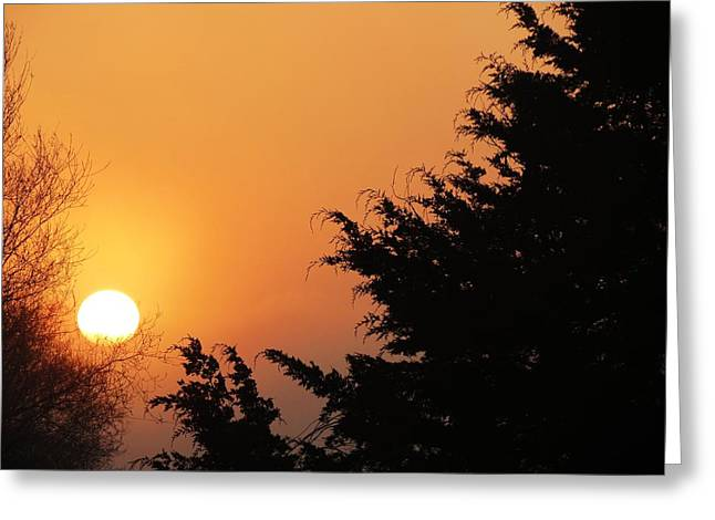 Sunrise Greeting Card by Rebecca Overton