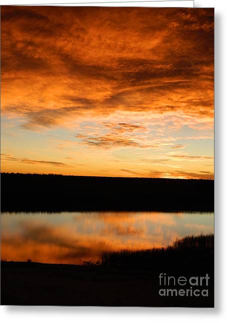 Sunrise Reflections Greeting Card by Sara  Mayer