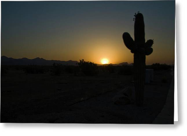 Greeting Card featuring the photograph Sunrise Saguaro by Tom Singleton