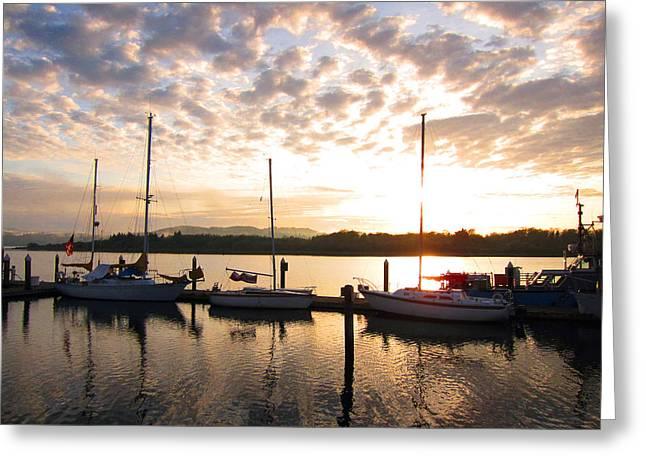 Sunrise Sailboats On Coos Bay Greeting Card by Gary Rifkin