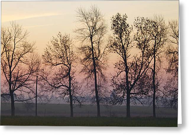 Sunrise Silhouette Greeting Card by John-Paul Fillion