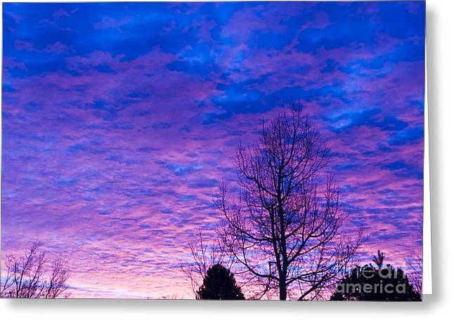 Sunrise Surprise 6 Greeting Card by Scotts Scapes