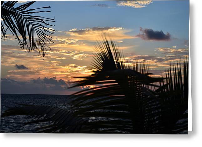 Sunrise Through Palms Greeting Card