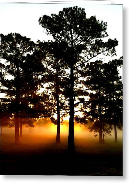Sunrise3 Greeting Card by Amber Stubbs