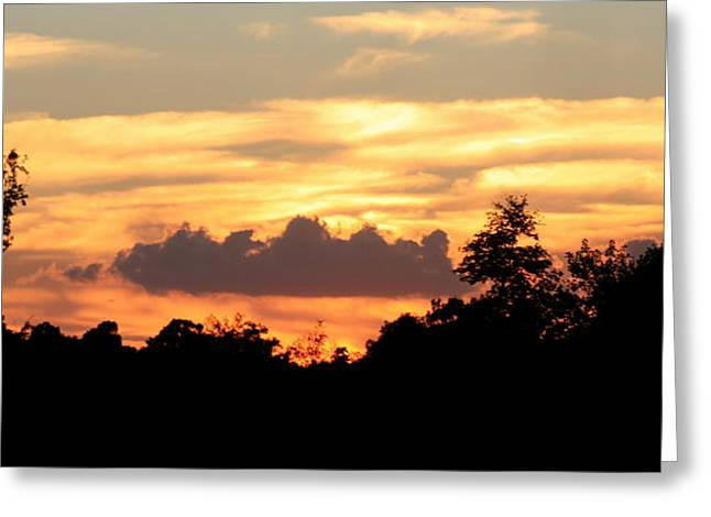 Sunset 1 Greeting Card by Veronica Ventress