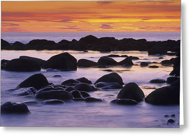 Sunset And Rocky Coastline, Gros Morne Greeting Card