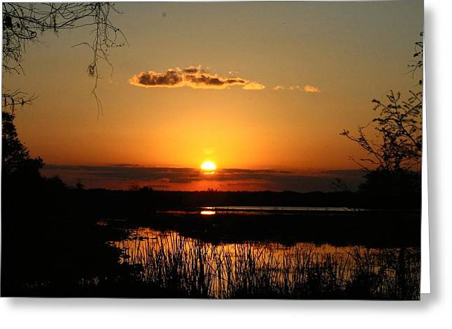 Sunset At Loxahatchee Greeting Card
