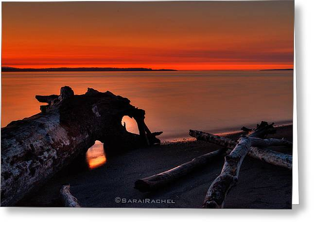 Sunset At Marina Beach Park In Edmonds Washington Greeting Card by Sarai Rachel