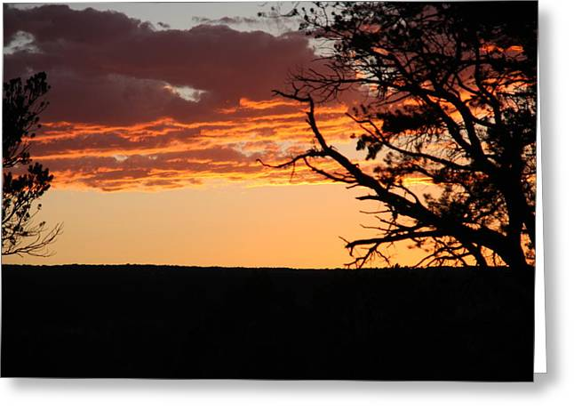 Sunset At Ridgway State Park Greeting Card by Marta Alfred
