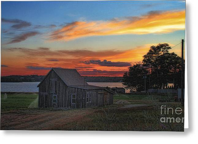 Greeting Card featuring the photograph Sunset At The Bog by Gina Cormier
