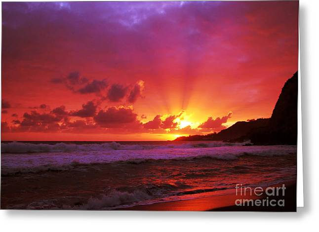 Sunset At The Island Greeting Card by Gaspar Avila