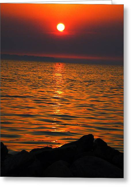 Greeting Card featuring the photograph Sunset by Colette V Hera  Guggenheim